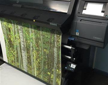 Wallpaper Forest Print